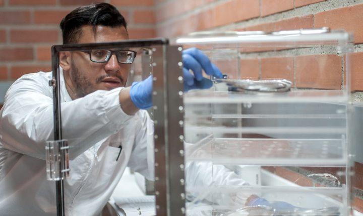 Facultades de Ingeniería y Ciencias Básicas se preparan para la Tercera Acreditación Institucional